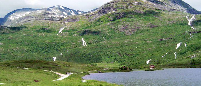 Entlang des Fjords
